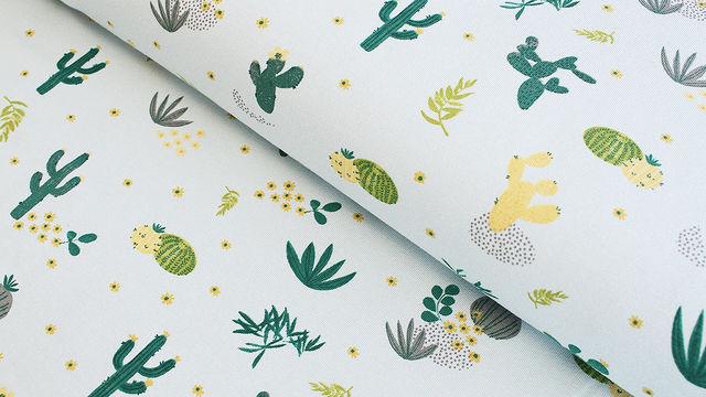 Baumwolljersey mint: Kaktuswüste - 145 cm im Makerist Materialshop - Bild 1