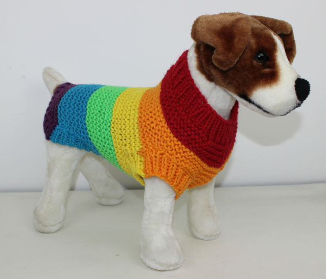 Chunky Spectrum Dog Coat