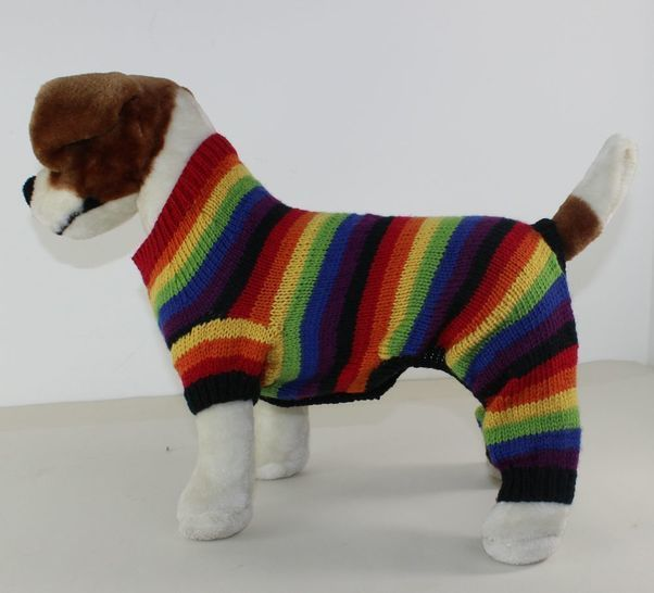 Dog Rainbow Stripe Onesie