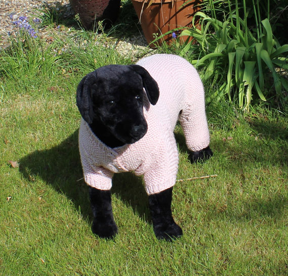 Dog Chunk Garter Stitch Onesie