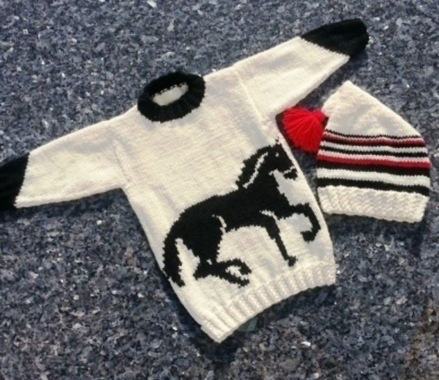 Horse Sweater and Hat
