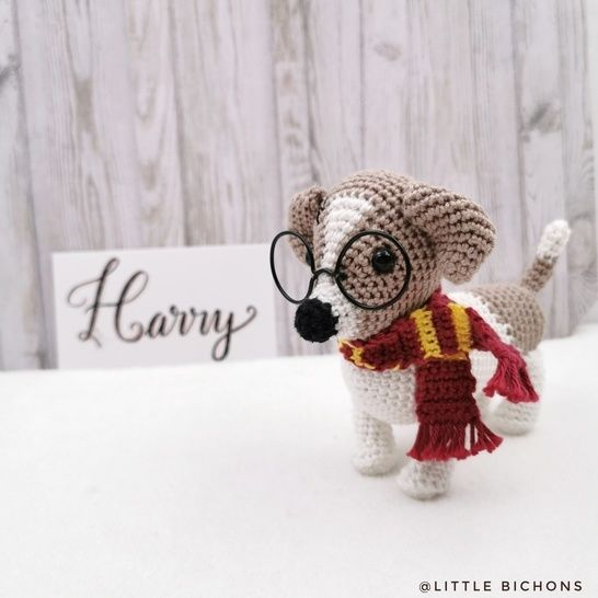 Harry le Jack Russell
