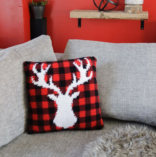 027 - Chalet pillow cover