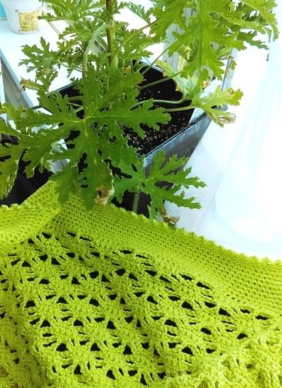 Citronella Bolero/Shrug- Crochet Pattern