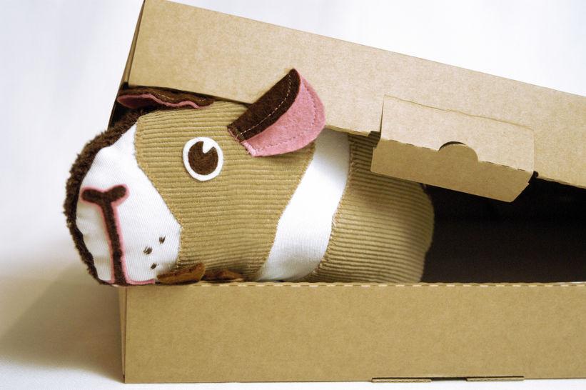 Schmittchen das Meerschweinchen - Kuscheltier Komplettbox von Knuschels im Makerist Materialshop - Bild 4