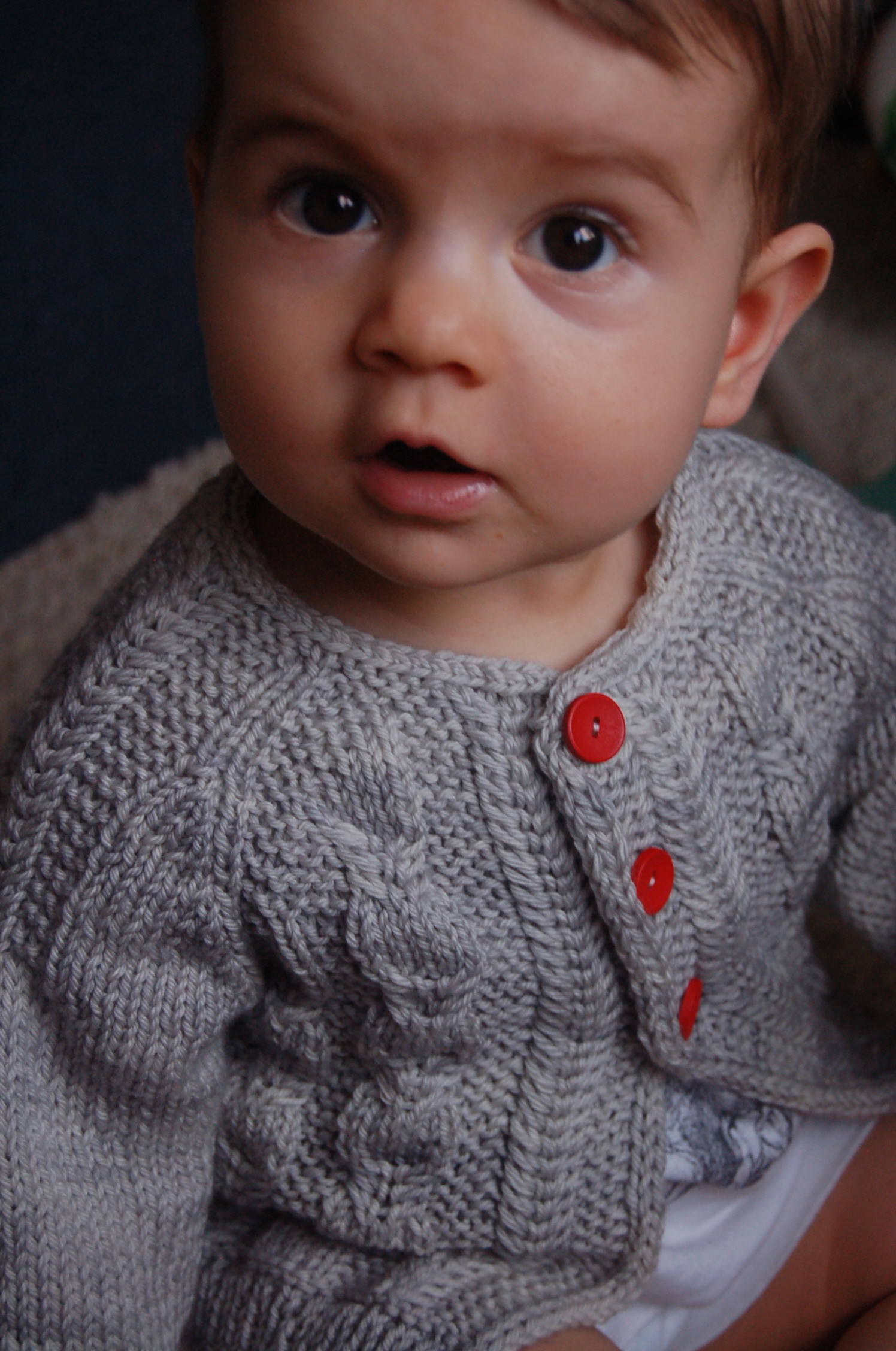Silverfox unisex cable cardigan - knitting pattern