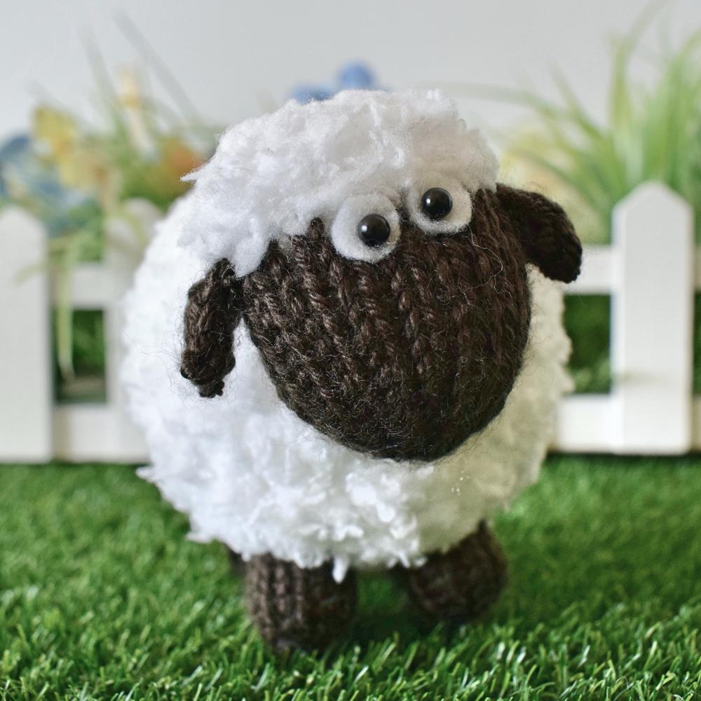 Baa-Bara the Sheep