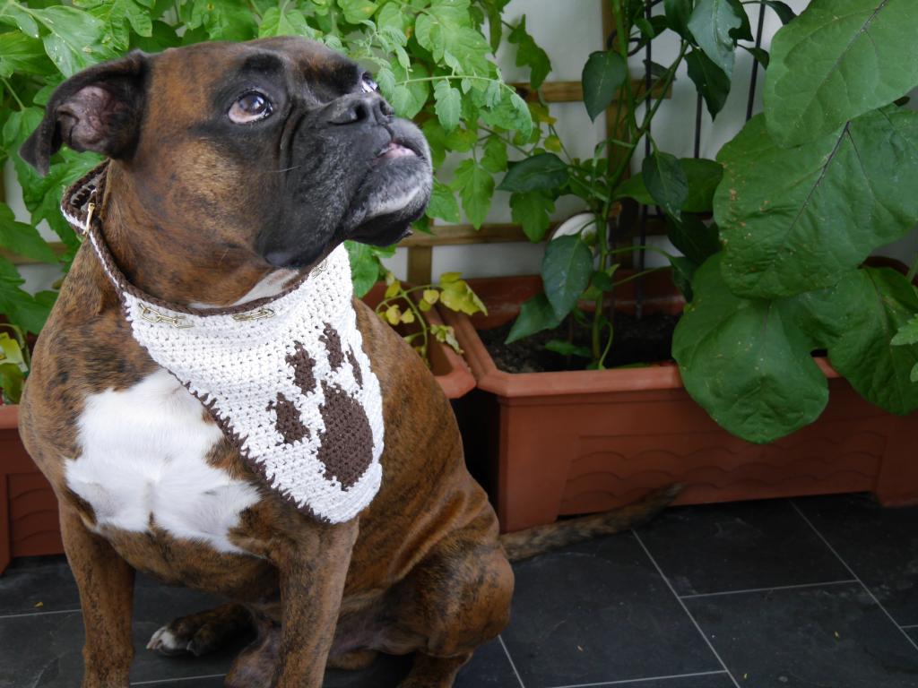 Hundehalstuch unisize  Dog Style No.6