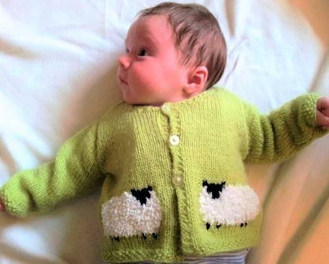 Baby Sheep Jacket and Hat