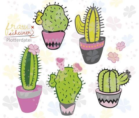 Kaktus Reigen