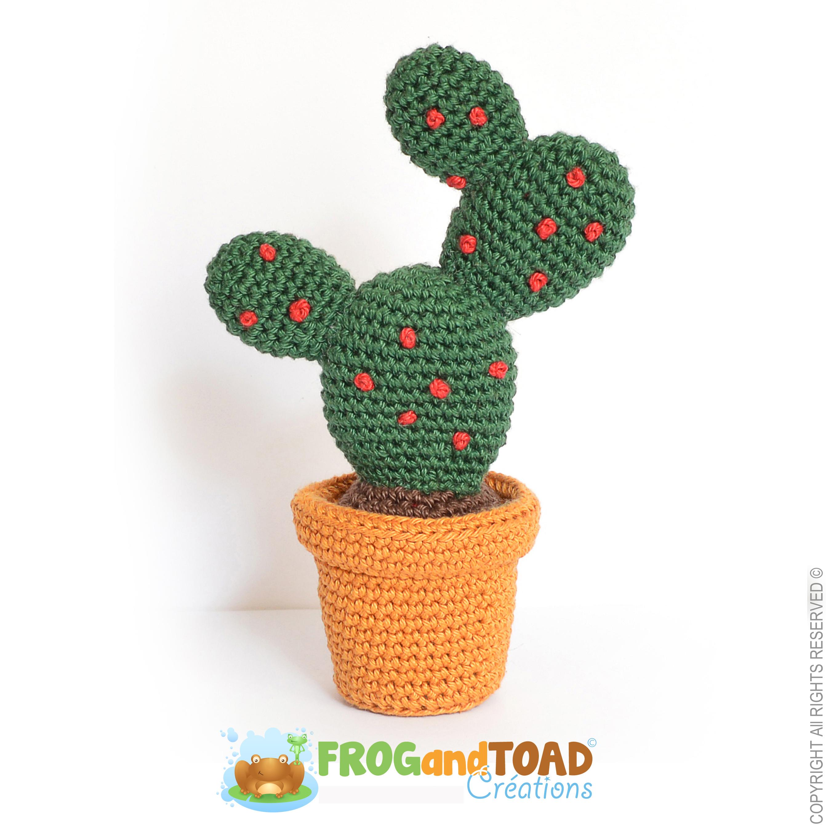 4 Amazing Crochet Cactus Patterns - Crochet Kingdom | 2684x2684