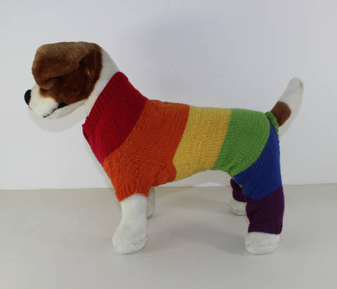Dog Rainbow Onesie