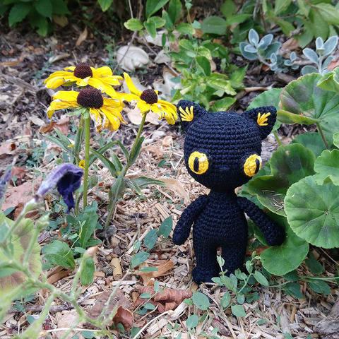 Némésis Le Chat Noir d'Halloween