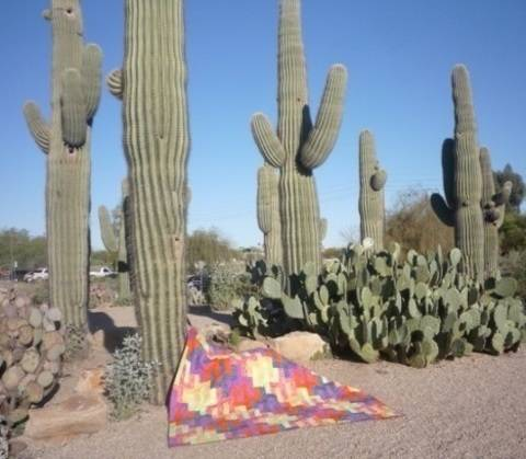 Saguaro Sunset Tesselating Jelly-Roll Quilt Pattern