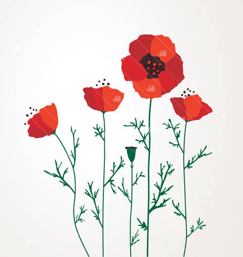 Poppies - Cutting file