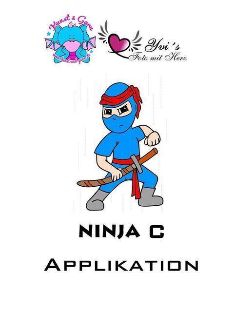 Applikationsvorlage Ninja2 (C)