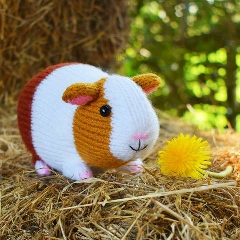 Gordon the Guinea Pig - toy knitting pattern at Makerist