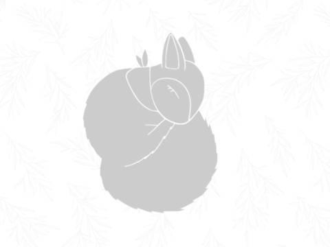 E-Book Eichhörnchen Ellie - Applikationsvorlage bei Makerist