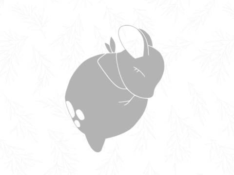 E-Book Reh Emmi - Applikationsvorlage bei Makerist