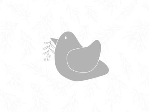 E-Book Vogel Eve - Applikationsvorlage bei Makerist
