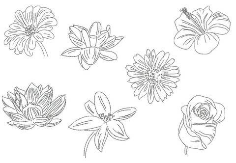 Stickdatei - Blumen Line Art in PES