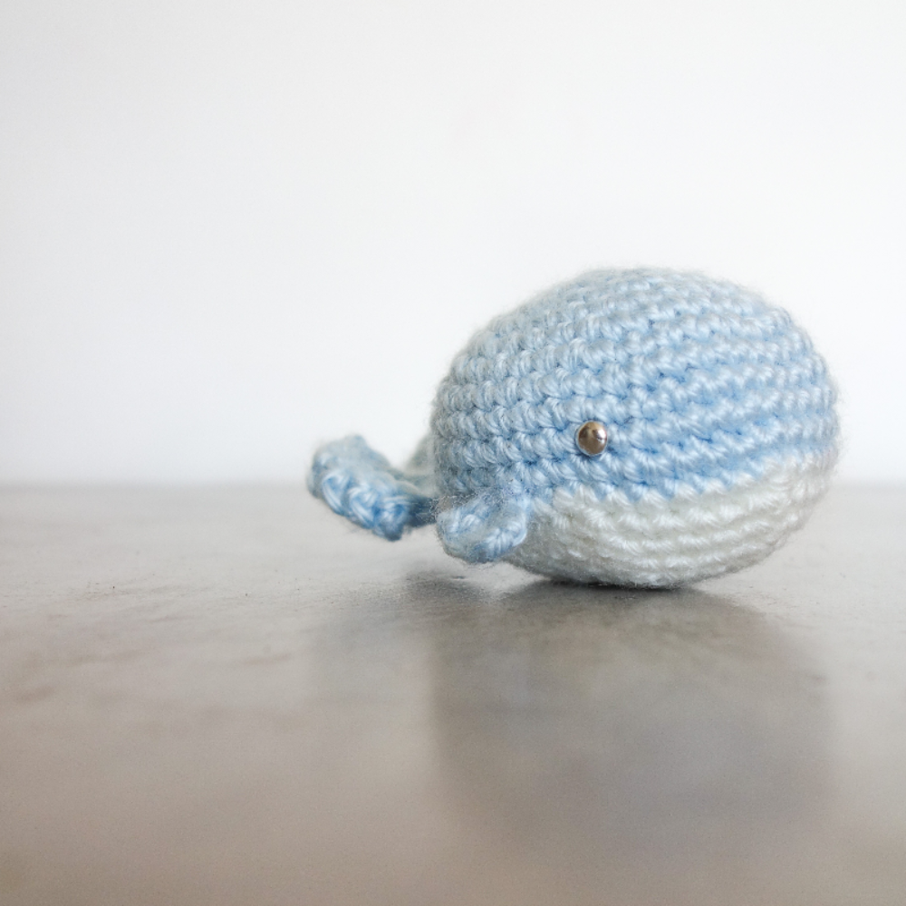 019 - The little whale
