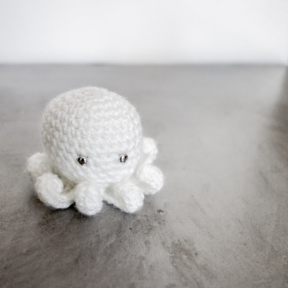 020- The cutest octopus