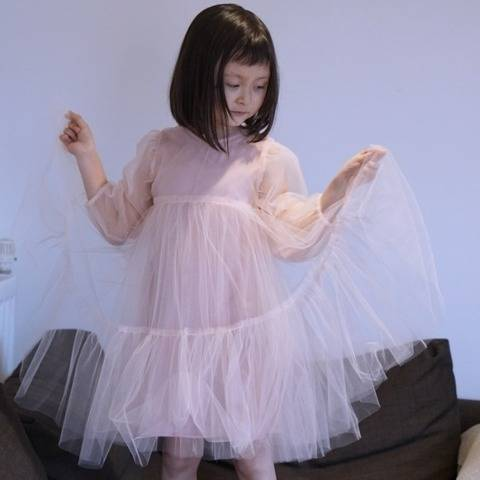 Shirred Sleeve Tulle Dress
