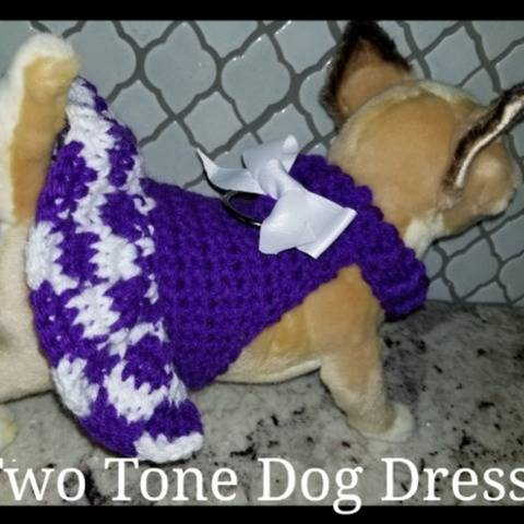 Pretty Two-Toned Dog Harness/Dress