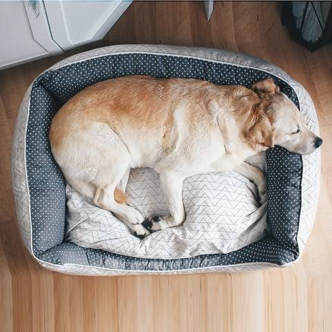 Dog Bed / Cat Bed (3 Sizes with zipper)   Sewing Pattern