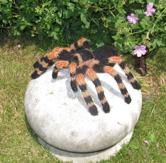 My Pet Tarantula  at Makerist - Image 1