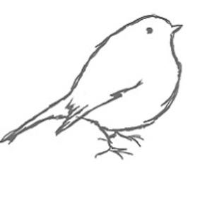 Grünkehlchens-Nest