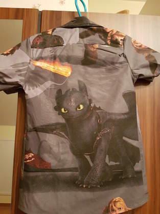 Drachenhzähmen Hemd