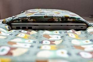 DIY-Laptop-Tasche für Piepmätze