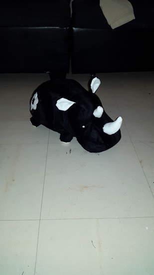 Rhinono