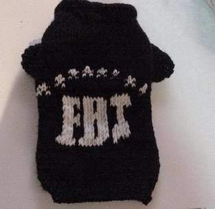 Pull pour chien au tricot  Fbi