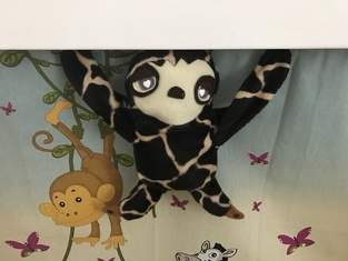 Giraul Tier