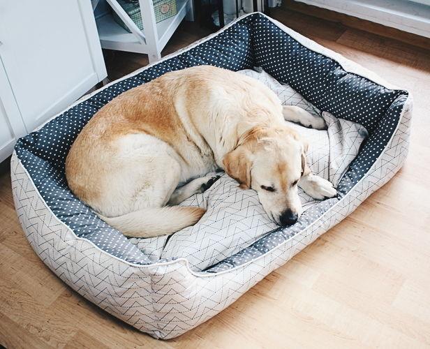Makerist - Hundebett für Jimmy - Nähprojekte - 1