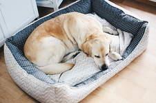 Makerist - Hundebett für Jimmy - 1