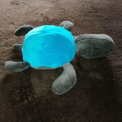 Makerist - plüsch schildkröte aus nicki - Nähprojekte - 1