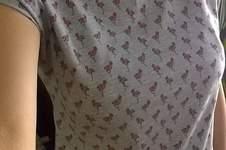 Makerist - Das 20-Minuten-Shirt aus grauen Flamingo-Jersey - 1