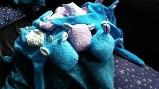 HippoDrachenGeschwister