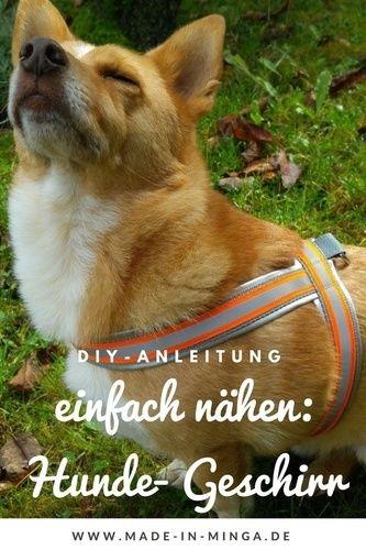 Makerist - Geschirr für Hunde einfach und schnell nähen - Nähprojekte - 1