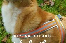 Makerist - Geschirr für Hunde einfach und schnell nähen - 1