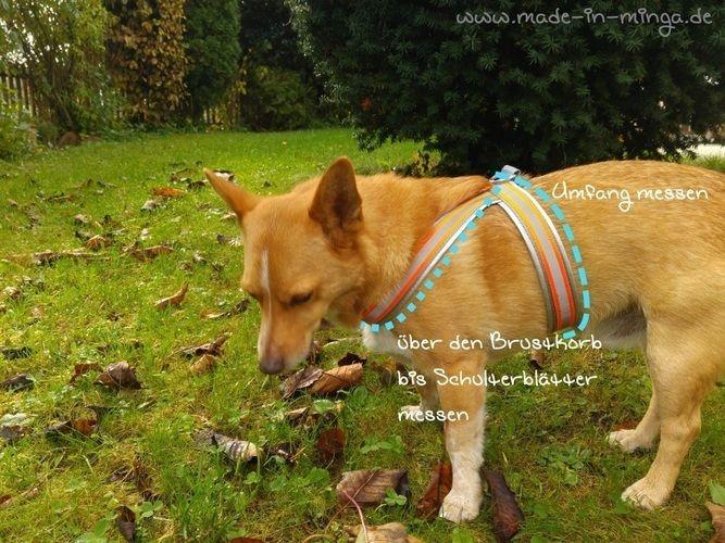 Makerist - Geschirr für Hunde einfach und schnell nähen - Nähprojekte - 2