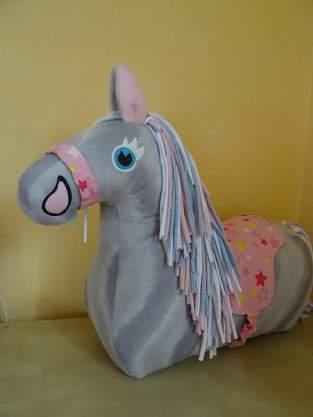 Reittier Pferd von Frau Scheiner