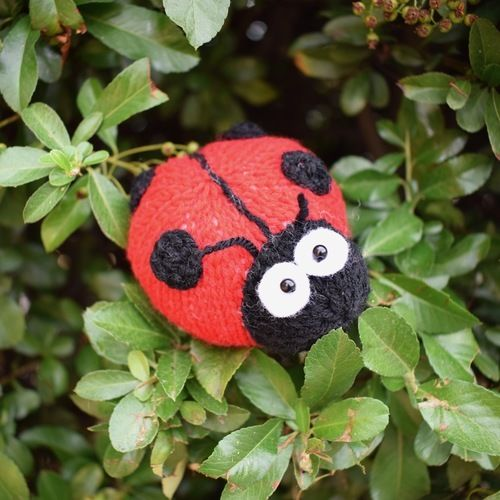 Makerist - Spots the Ladybird - Knitting Showcase - 1
