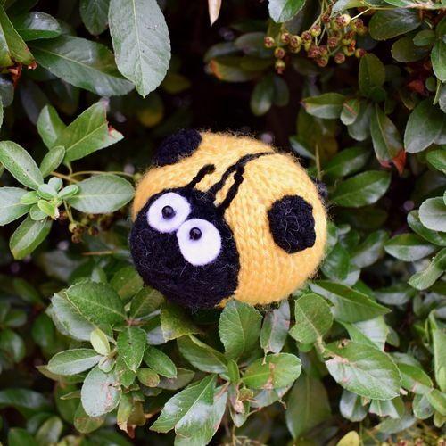 Makerist - Spots the Ladybird - Knitting Showcase - 2