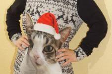 Makerist - Weihnachtspullover / Hoodie YOLI von Sara&Julez - 1