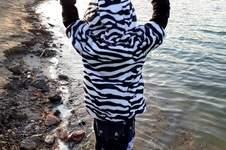 Makerist - Kuschelfreund als süßes zebra - 1